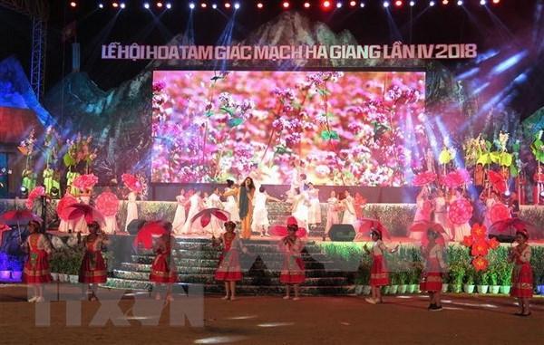 Comienza en provincia vietnamita de Ha Giang Festival de Flores de Alforfon hinh anh 1