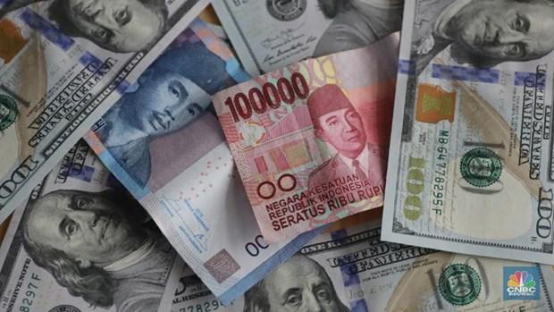 Rupia indonesia se encuentra bajo presion, sostiene ministro de Coordinacion de Asuntos Economicos hinh anh 1