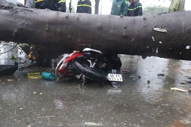 Tifon Usagi azota el Sur de Vietnam y deja un fallecido y grandes perdidas materiales hinh anh 1