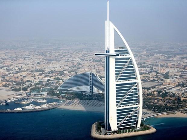 Emiratos Arabes Unidos, potencial mercado de exportacion de Ciudad Ho Chi Minh hinh anh 1