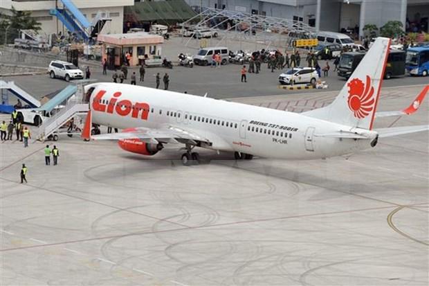 Indonesia alerta a la aerolinea Lion Air sobre la seguridad de vuelos hinh anh 1