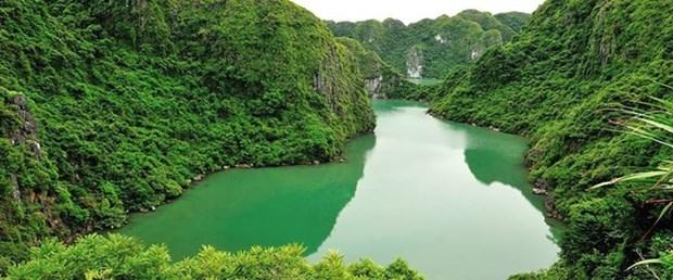 Vietnam promueve conservacion de valores de sus reservas mundiales de biosfera hinh anh 1