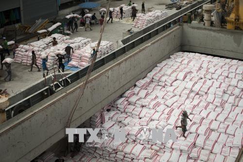 Tailandia gana acuerdos para exportar toneladas de arroz a Filipinas hinh anh 1