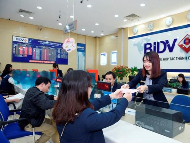 Vietnam anuncia los mejores 100 productos y servicios elegidos por consumidores hinh anh 1
