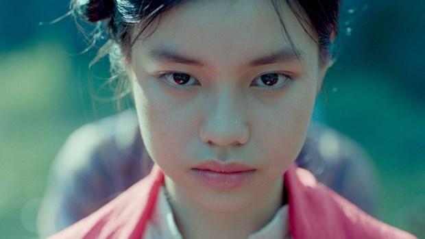 Pelicula vietnamita recibe premio en Festival cinematografico internacional de El Cairo hinh anh 1