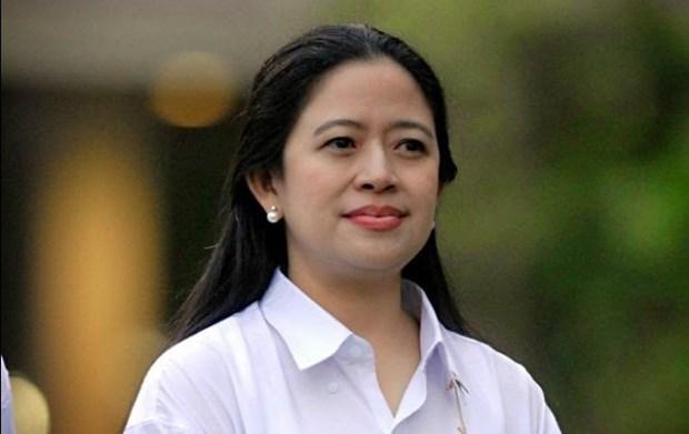 Indonesia alcanza logros notables en uso de energia nuclear hinh anh 1