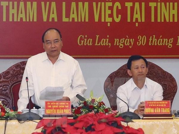Premier vietnamita insta a provincia altiplana de Gia Lai aumentar la cobertura forestal hinh anh 1