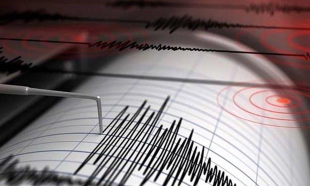 Sismo de 6,5 grados de magnitud sacude islas de Indonesia hinh anh 1