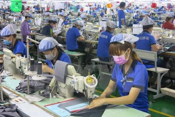 Aumenta el numero de nuevas empresas en Vietnam hinh anh 1