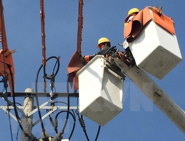 Hogares pobres vietnamitas se benefician por servicios gratuitos del Grupo nacional de Electricidad hinh anh 1