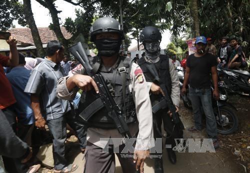 Indonesia busca los cuerpos de 31 trabajadores asesinados por separatistas hinh anh 1