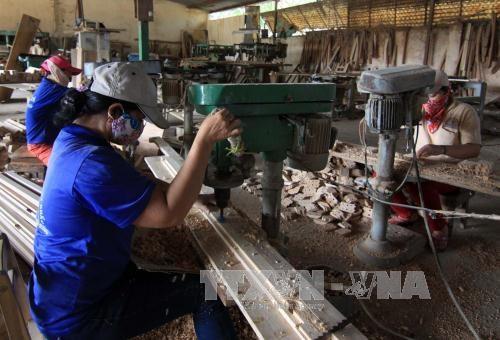 Exportaciones silvicolas de Vietnam preven superar nueve mil millones de dolares este ano hinh anh 1