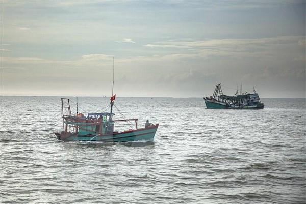 Periodistas europeos estudian esfuerzos de provincia vietnamita para evitar pesca ilegal hinh anh 1