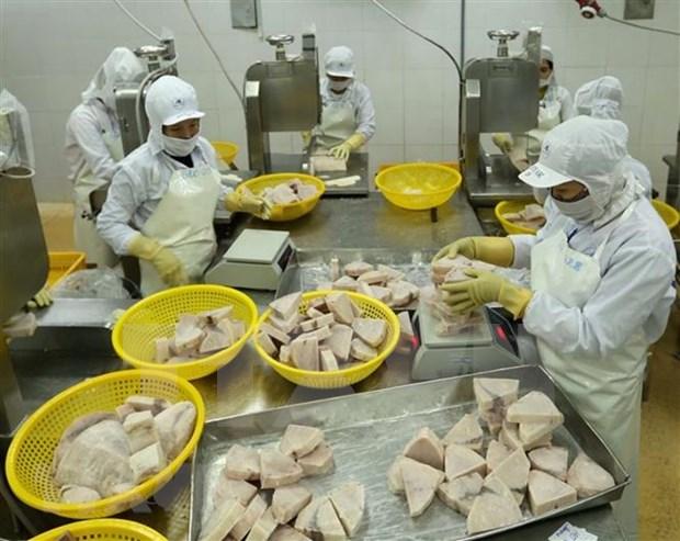 En alza exportacion de atun vietnamita a Israel hinh anh 1
