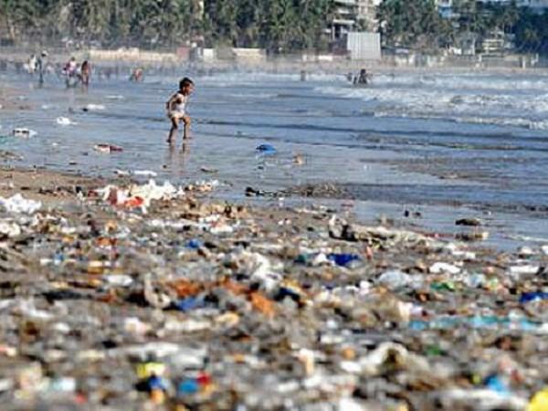 Intercambian en Vietnam experiencias en control de residuos plasticos en el mar hinh anh 1