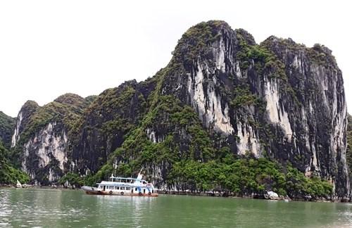 Bahia de Halong, una joya de la naturaleza vietnamita hinh anh 2