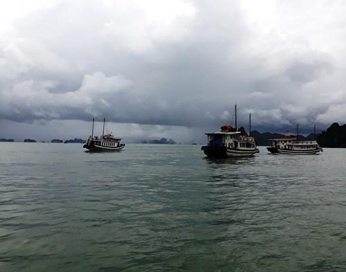 Bahia de Halong, una joya de la naturaleza vietnamita hinh anh 4