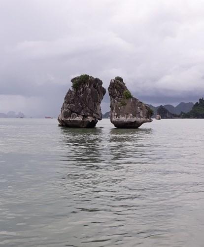 Bahia de Halong, una joya de la naturaleza vietnamita hinh anh 5
