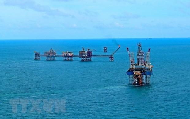 Grupo petrolero vietnamita cumple meta trazada para 2018 hinh anh 1