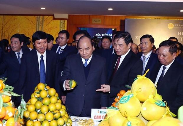 Premier de Vietnam insta a provincia nortena a convertirse en fuerza motriz para desarrollo regional hinh anh 1