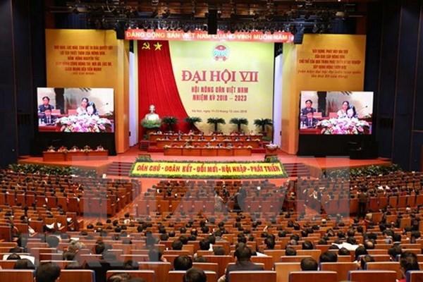 Asociacion de Agricultores de Vietnam por elevar eficiencia de sus actividades hinh anh 1