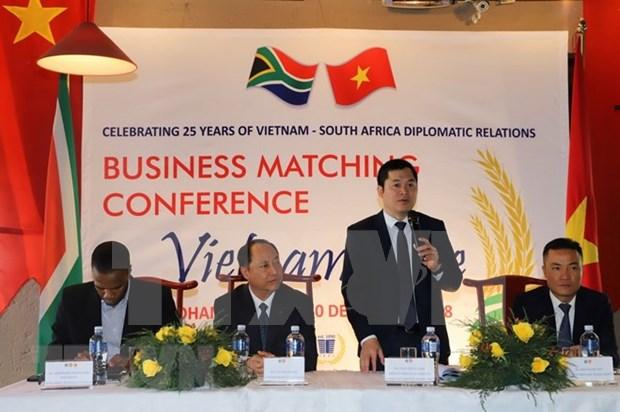 Estudian posibilidades para impulsar intercambio comercial Vietnam- Sudafrica hinh anh 1