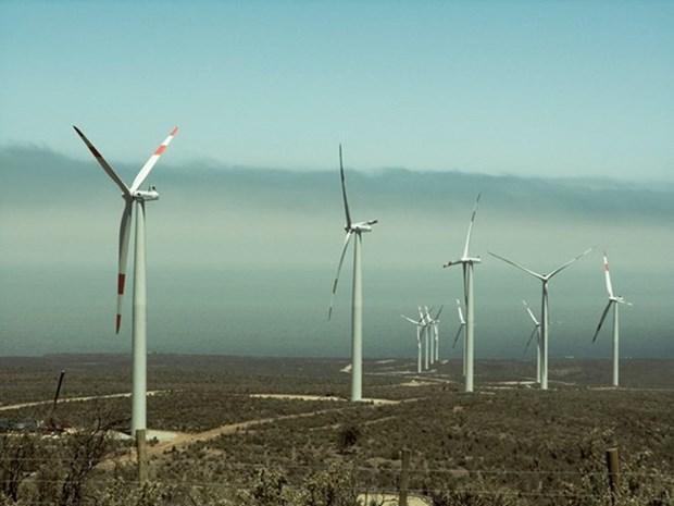 Proponen invertir 12 mil millones de dolares en proyecto de energia eolica en Vietnam hinh anh 1