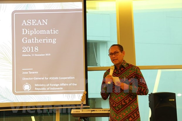 Indonesia actualiza a diplomaticos sobre progreso de la ASEAN hinh anh 1