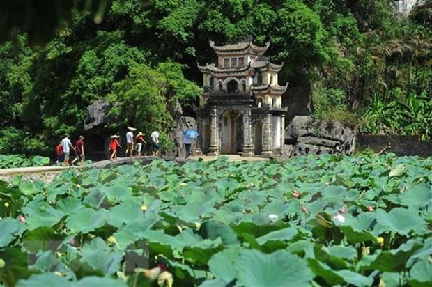 Promueven potencialidades del turismo vietnamita en Kuwait hinh anh 1