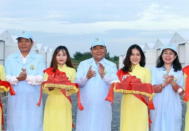 Premier de Vietnam visita una piscifactoria de alta tecnologia en An Giang hinh anh 1