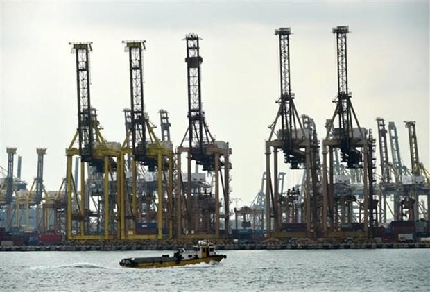 Disminuyen exportaciones no petroleras en Singapur en noviembre hinh anh 1
