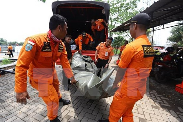 Lion Air reanuda labores de busqueda de victimas de avion accidentado hinh anh 1