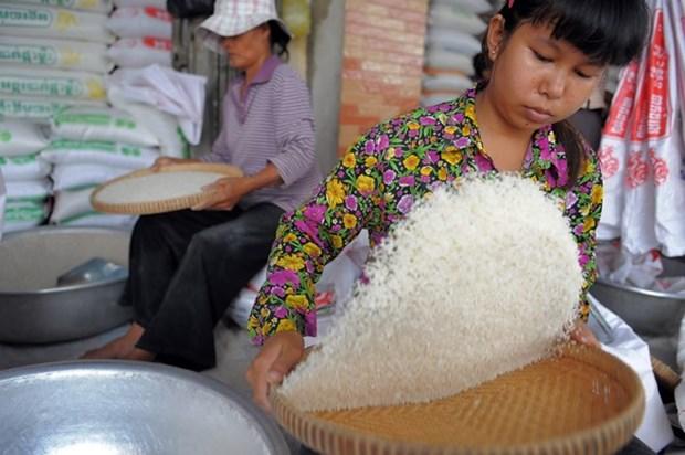 Pronostican aumento de crecimiento economico de Camboya en 2019 hinh anh 1