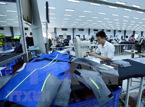 Industria de confecciones textiles vietnamita capta grandes inversiones extranjeras hinh anh 1