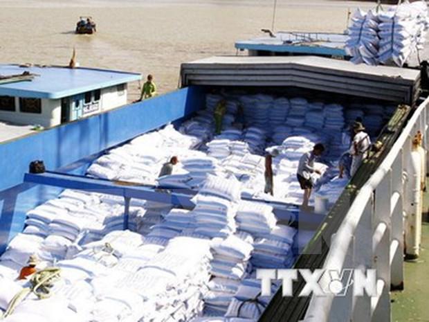 Destacan positivas senales de produccion de arroz aromatico de Vietnam hinh anh 1