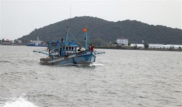 Provincias vietnamitas realizan esfuerzos para luchar contra la pesca ilegal hinh anh 1