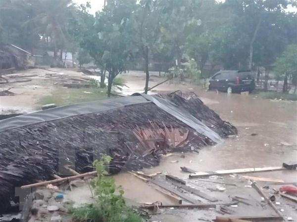 Indonesia reafirma atencion en mejoramiento del sistema de alerta temprana de tsunami hinh anh 1