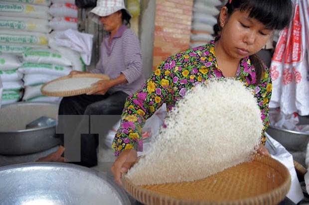 Intercambio comercial de Myanmar alcanza seis mil millones de dolares en dos meses hinh anh 1