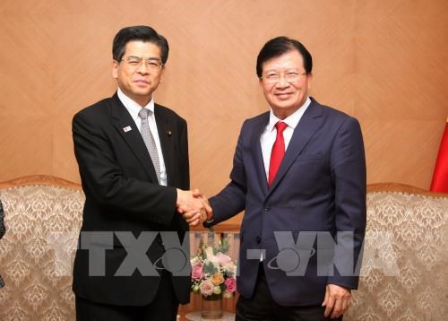 Vietnam y Japon cooperan en desarrollo infraestructural y prevencion de desastres naturales hinh anh 1
