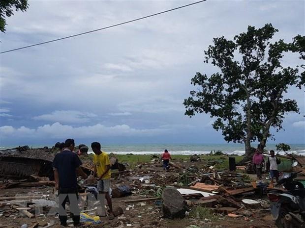Continua aumentando numero de muertos por tsunami en Indonesia hinh anh 1