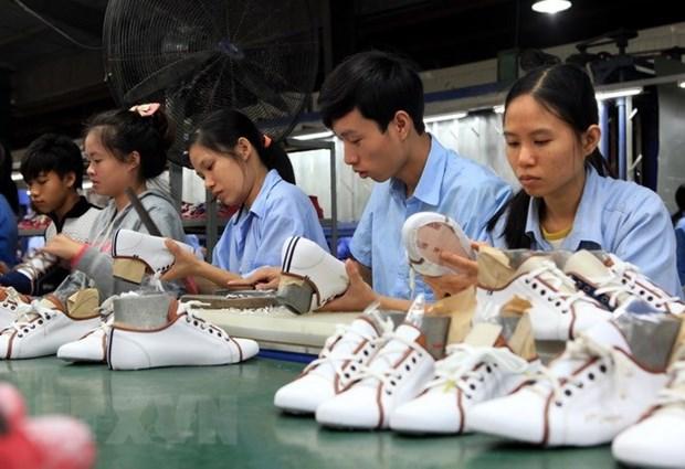Exportaciones de calzado de Vietnam obtienen 19,5 mil millones de dolares este ano hinh anh 1
