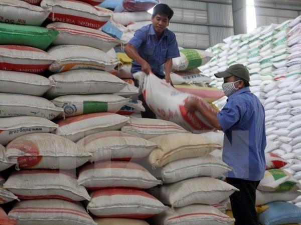 Vietnam distribuye 120 mil toneladas de arroz para respaldar a pobres en ocasion del Tet hinh anh 1