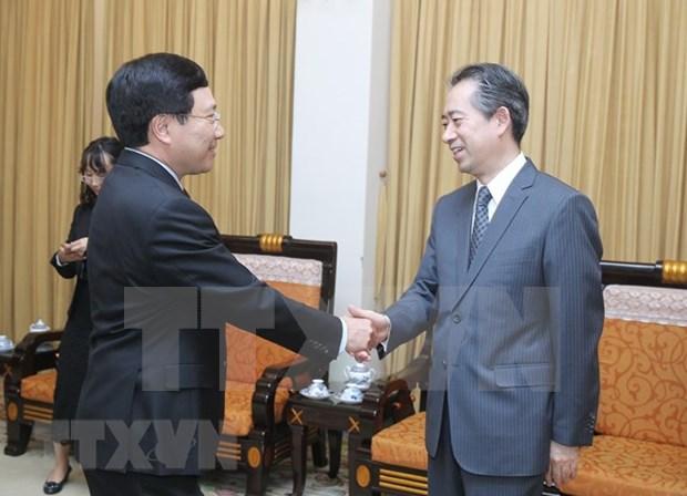 Vicepremier y canciller de Vietnam aboga por mantener intercambio de delegaciones con China hinh anh 1