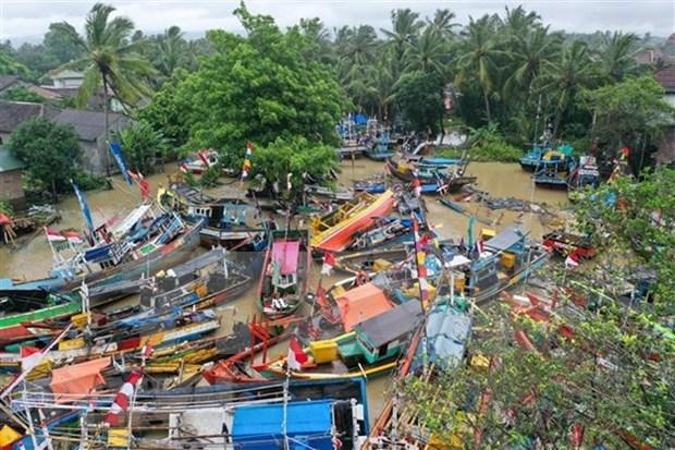 Terremoto de 6.1 grados de magnitud sacude provincia indonesia de Papua Occidental hinh anh 1