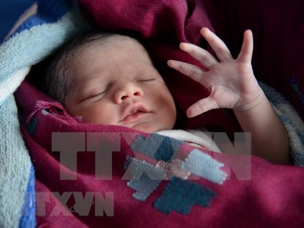 Vietnam se esfuerza por luchar y prevenir el trafico de bebes hinh anh 1