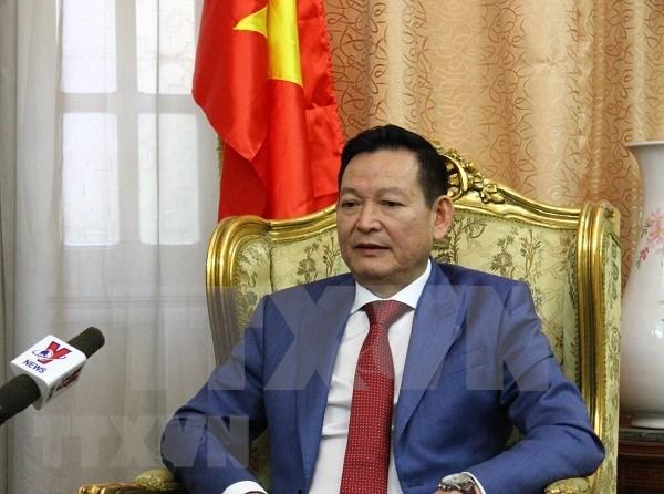 Vietnam adopta medidas para ayudar a sus victimas del atentado en Egipto hinh anh 1
