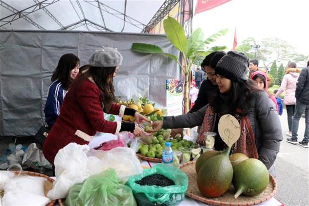 Inauguran festival cultural y turistico en provincia vietnamita de Hai Duong en saludo al Nuevo Ano 2019 hinh anh 1