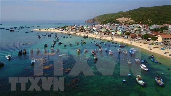 Provincia vietnamita de Binh Dinh da la bienvenida a cuatro millones de turistas en 2018 hinh anh 1