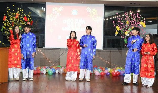 Vietnamitas en Republica Checa y Corea del Sur saludan al ano 2019 hinh anh 1