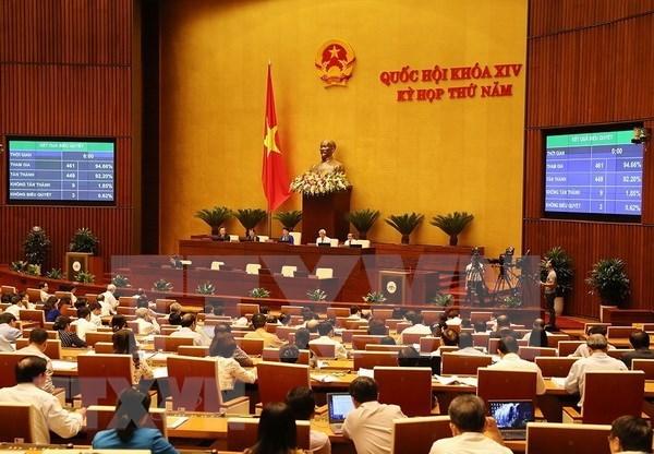 Entran en vigencia importantes leyes en Vietnam a partir de 2019 hinh anh 1